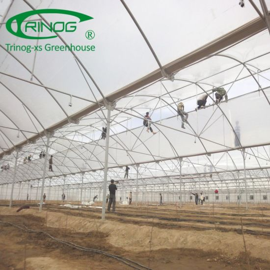 EU multispan poly film Agricultural Greenhouse facilities for farm