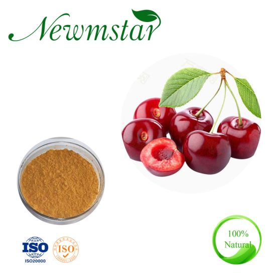 Manufacturer Best Price Natural Acerola Cherry Extract 20% Melatonin, Good for Sleep and Personal Care