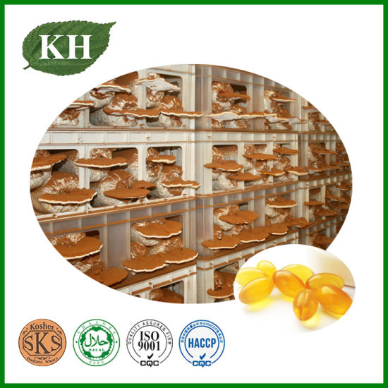 Kingherbs′ 100% Natural Reishi Spore Oil Softgel (no additives or carriers)