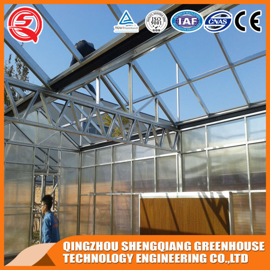 Agriculture/Commercial Multi Span PC Sheet Green House/Grow Tent/Greenhouse for Planting/Exhibition/Sightseeing