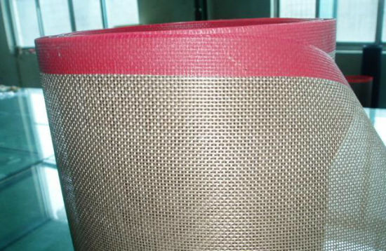 High Temperature Resistant PTFE Mesh Conveyor Belt pictures & photos