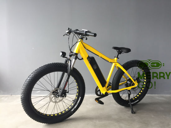 2017 New Fat Electric Mountain Bike for Wholesale