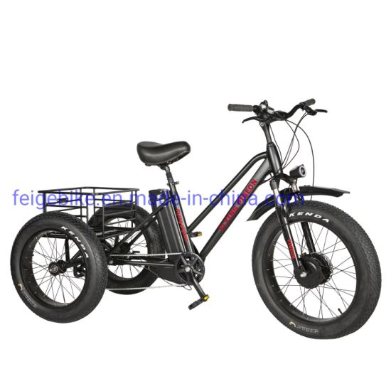 """Strong Durable Throttle Type 24""""*4.0 Electric Fat Trike (FP-ETRK1804)"""