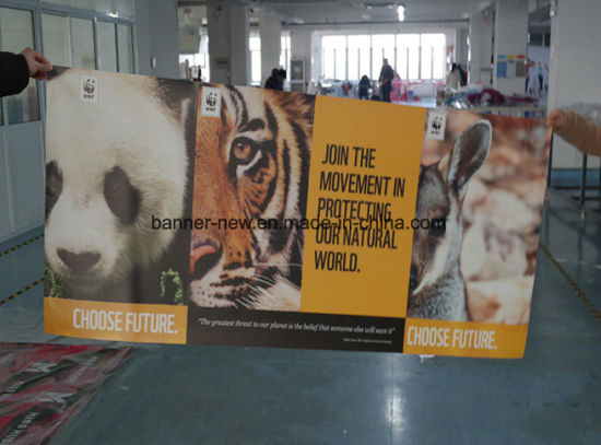 High Resolution Outdoor Double Side Printing Vinyl Banner Digital Printing (SS-VB114)