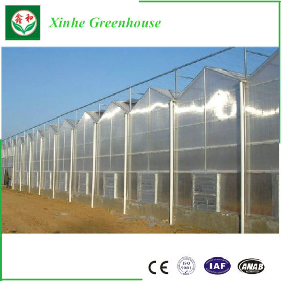 Turn Key Greenhouse