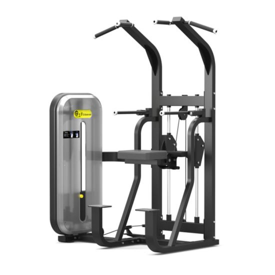 Wholesale Assisted Chin up Machine Gym Equipment