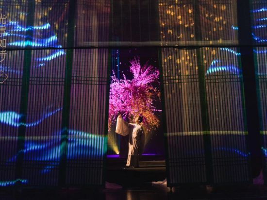 3D Holonet Holo Gazue Screen Transparent Holographic System for Stage