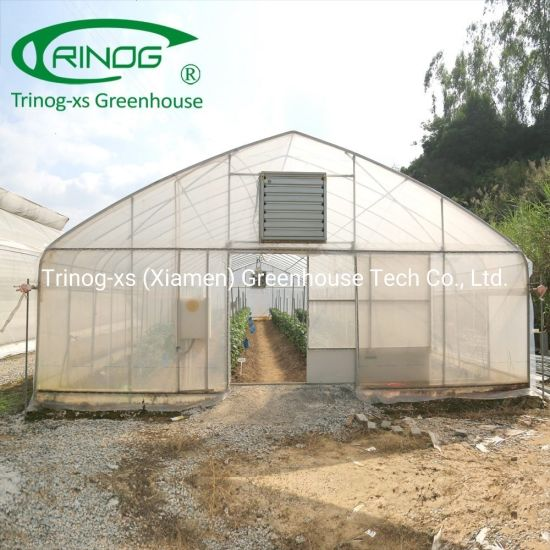 Single span 200micro green house for sale