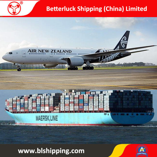 Shipment Agent From China to New Zealand New Plymouth Forwarding pictures & photos