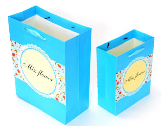 Set of 2 Polishing Custom Printed Paper Gift Bags