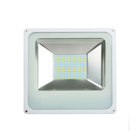 Shenzhen Manufacturer New Released Lowest Price 50W LED Flood Light pictures & photos