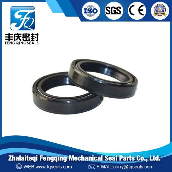 OEM Tc Tb Sc Tg Oil Seal NBR Viton Rubber Framework Oil Seal