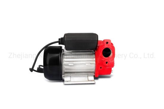 110V Diesel Fuel Transfer Pump