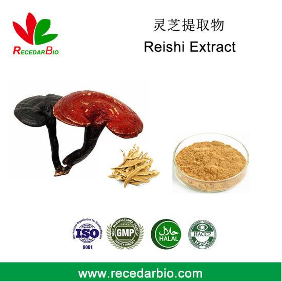Plant Reishi Polysaccharide Powder Lingzhi Reishi Mushroom Ganoderma Lucidum Extract