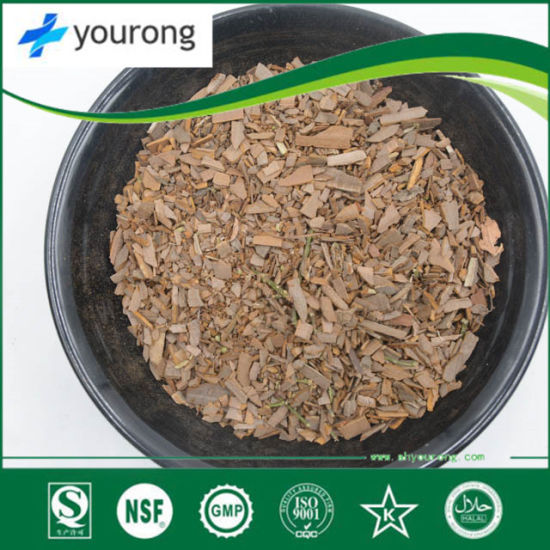 Ramulus Euonymi, a Chinese Herbal Medicine with Great Medicinal Value, Plant Extract, Organic Powder