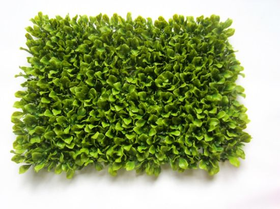 Artificial Plants and Flowers of Artificial Grass 25X25cm Gu865840038 pictures & photos