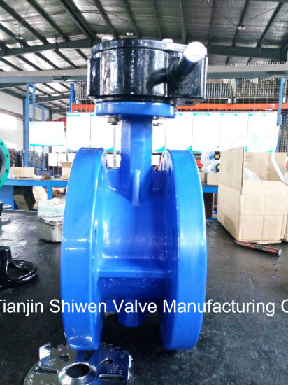 API 150lb Flange Type Butterfly Valve with Gear Operator pictures & photos