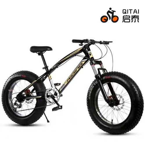 "20"" Fat Tire 4.0 Tyre Bicycle, Wide Tire Mountain Bicycle, MTB Sport Bicycle"