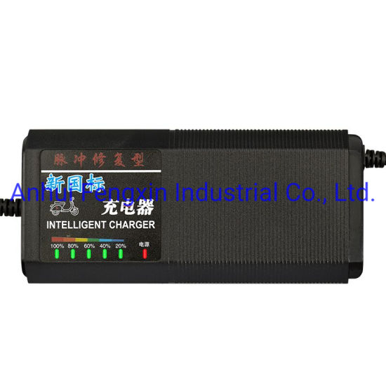 48V20Ah Lead Acid Electric Car Battery Charger Used for Car Battery