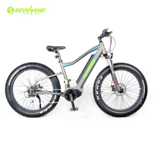 7 Speed 48V 500W Fat Tire Electric Bike Electric Bicycle with MID Motor