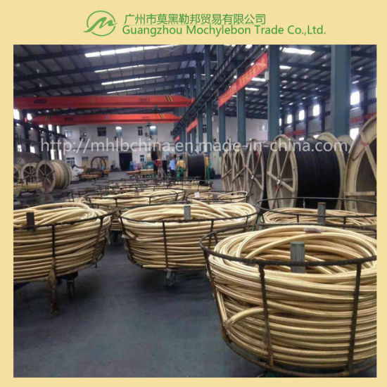 Wire Braided Hydraulic Hose for Coal Mine (602-3B-2′′) pictures & photos