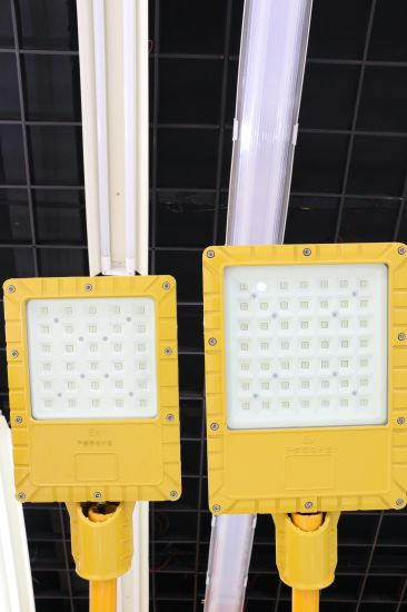 Sunbird LED Explosion Proof Road Lamp Used for Professional Areas pictures & photos