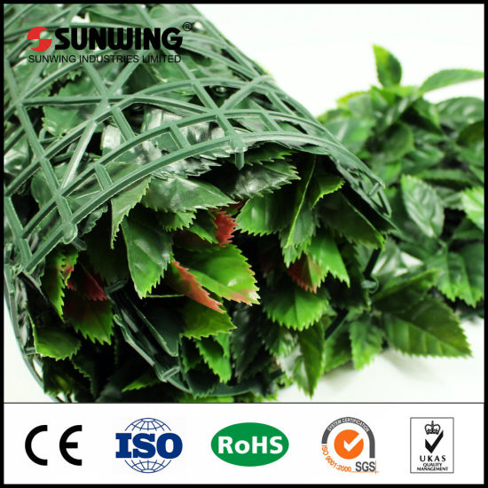 High Imitationartificial Landscape Hedge for Home Decoration pictures & photos