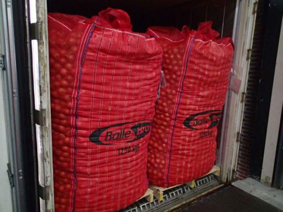 Onion Jumbo Bags with Ventilated Mesh