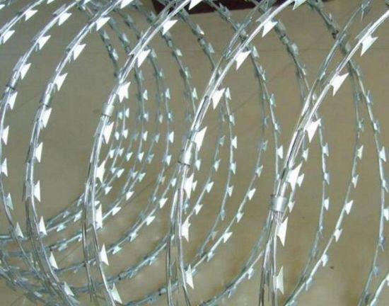 China Low Price Security Fencing Cheap Galvanized Concertina Razor ...