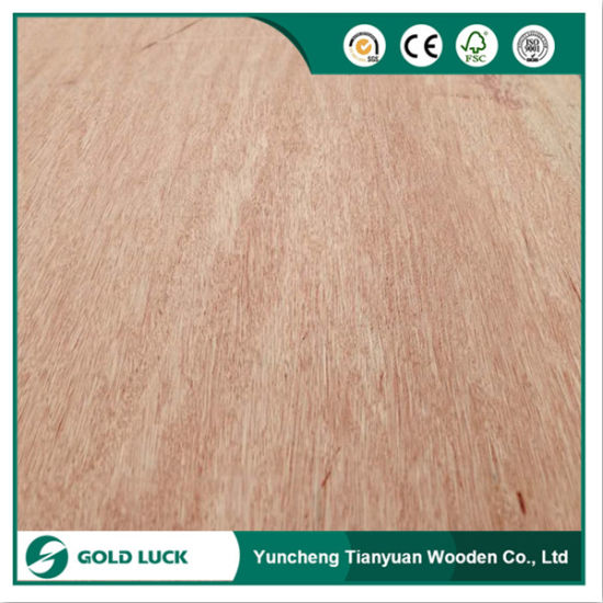 BB/CC Grade Okoume/Bintangor/Pine Plywood for Packing and Packing Use pictures & photos