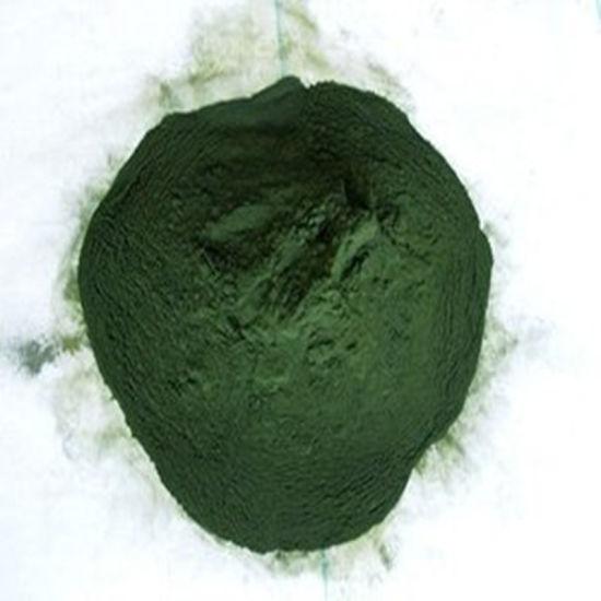 Manufacturer of Organic Spirulina Powder Low Price Stable Supply