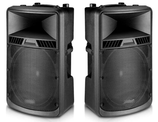 18inch Portable Speaker with Single Channel