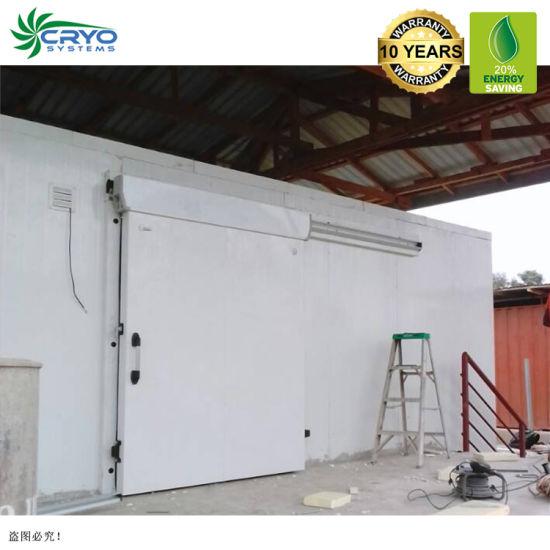 Warehouse Modular Prefabricated Food Milk Flower Onion Potato Fruit and Vegetables Cold Storage