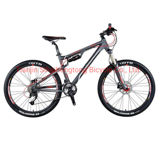 "26"" Suspension High Quality MTB Alloy Parts (SH-0917)"