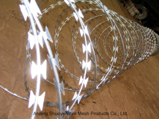 Concertina Coils Razor Type Barbed Wire pictures & photos