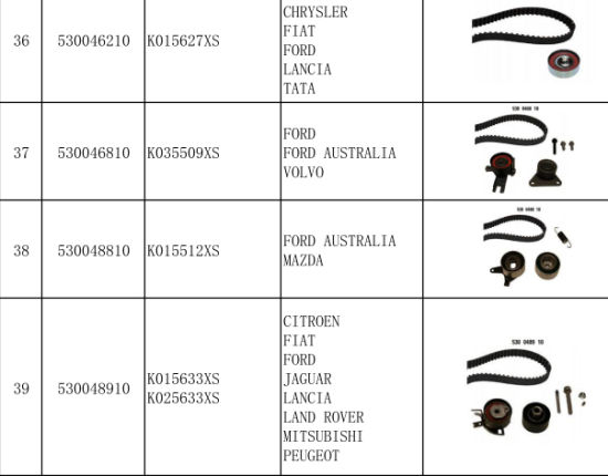 Belt Timing Kits for Fort pictures & photos