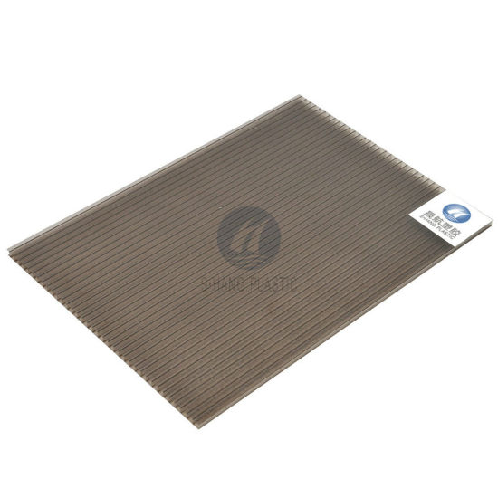Bronze Polycarbonate Hollow Sheet with SGS pictures & photos