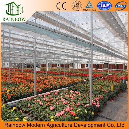 Poly Film Greenhouse with Light Deprivation System
