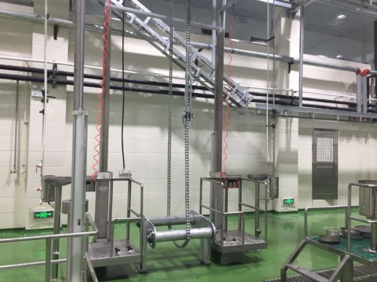 Live Cattle Sheep Slaughtering Line for Beef Meat Processing Plant