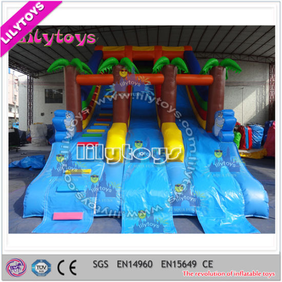 China Frame Pool Water Slide, Inflatable Commercial Water