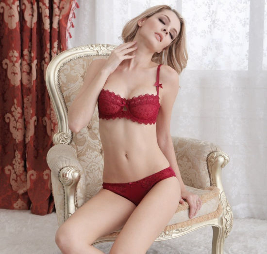b6651ff6fbdaa High Quality OEM Customized Design Lace Stylish Push up Sexy Brassiere  (FPY328) pictures