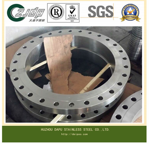 Forged Stainless Steel Flange or Casting Flange
