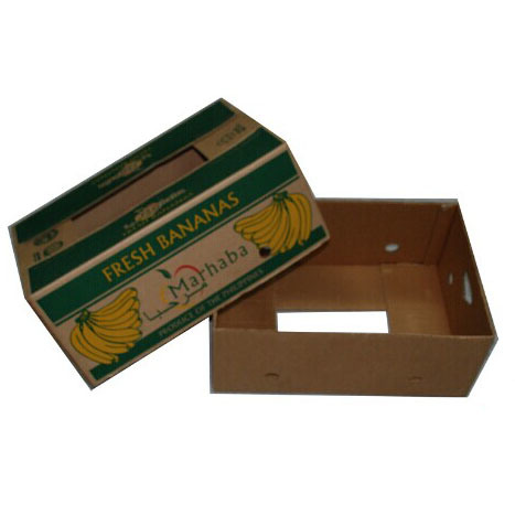 Durable Fruit an Vegetable Corrugated Boxes pictures & photos