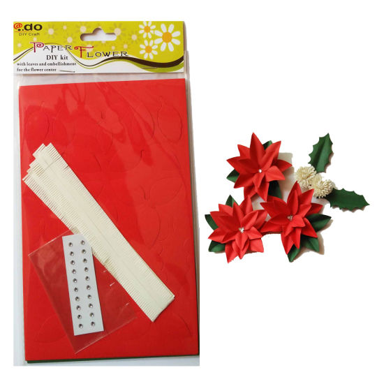 Paper Flower DIY Handmade Material Kit of Christmas Flower pictures & photos