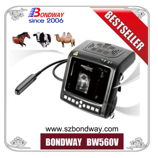 Diagnostic Ultrasound Portable 4D Doppler Scanner, Veterinary Ultrasound for Livestock Reproduction Imaging, Breeding Farmers, Vet Ultrasonic Scanner