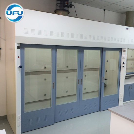 Chemistry Lab Furniture Walk-in Fumehood with Competitive Price pictures & photos