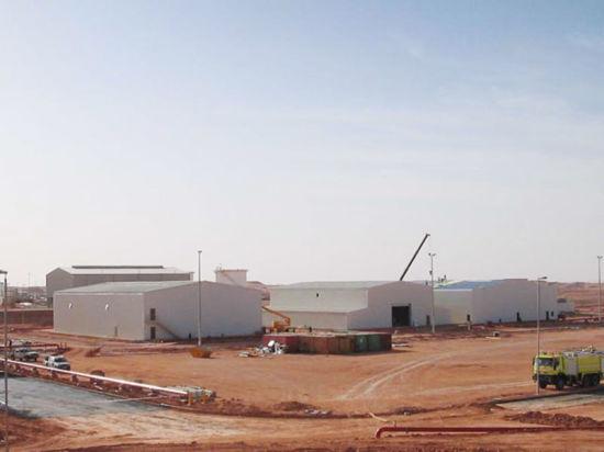 Steel Structure Workshop, Plant, Warehouse (SSW-04)