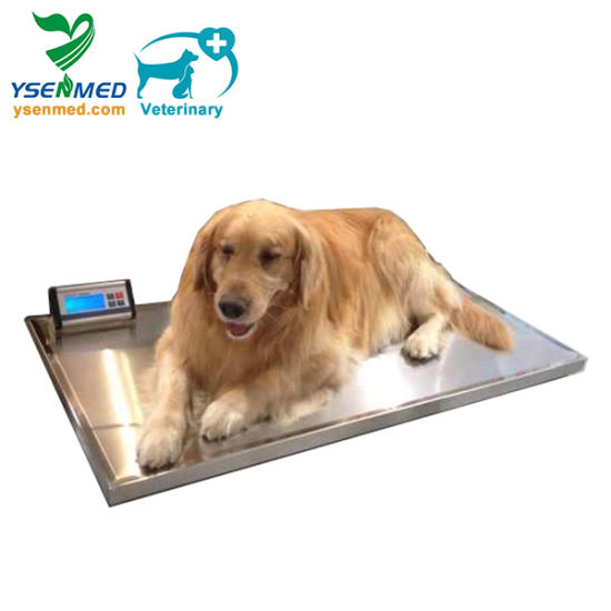 Vet Clinic Veterinary Digital 150kg Weighing Scale pictures & photos