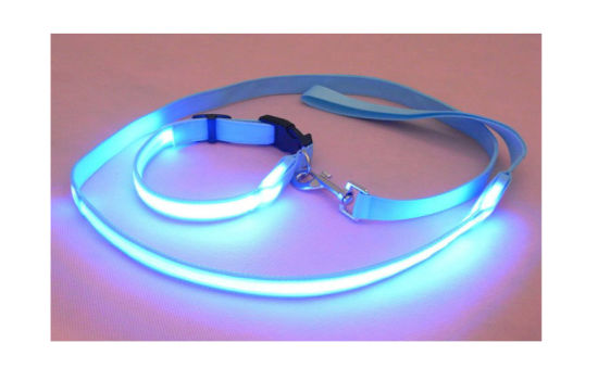 Nylon Flashing LED Dog Leash with Night Light pictures & photos