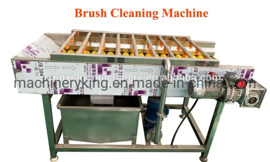 Vegetable and Fruit Processing Double Bubble Washer Type Industrial Washing Machine